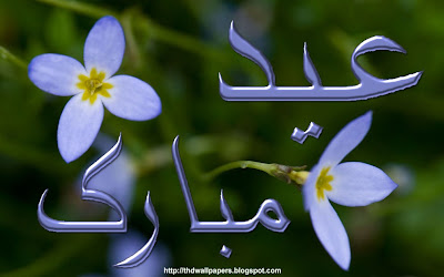 Eid Ul Adha Zuha Mubarak Flowers Wallpapers Greeting Cards 2012 in Urdu 014