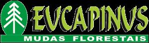 EUCAPINUS MUDAS FLORESTAIS Rodovia SP. 258 Rua. José Prado Melo, 55 Vila Isabel - Itapeva - SP tel: (15) 3521-6961 Cel: (15) 99775-3734 / 997406360