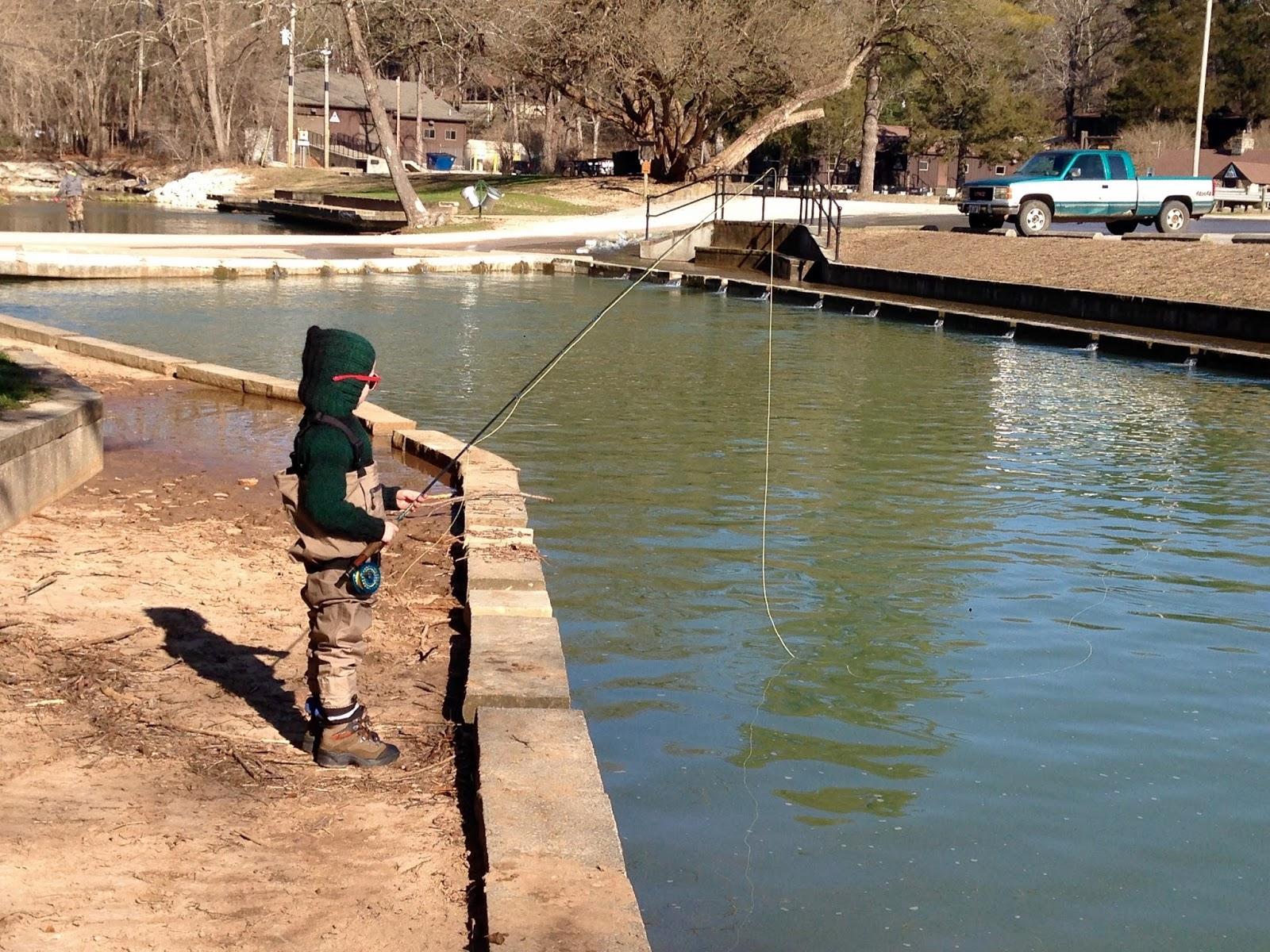 Ozark fly fishing for Roaring river fishing