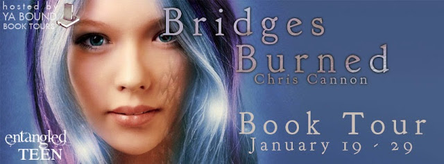 http://yaboundbooktours.blogspot.com/2014/12/blog-tour-sign-up-bridges-burned-going.html