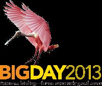 big day 2013