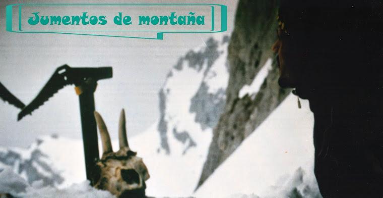 Jumentos de montaña
