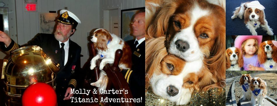 Molly & Carter's Titanic Adventures