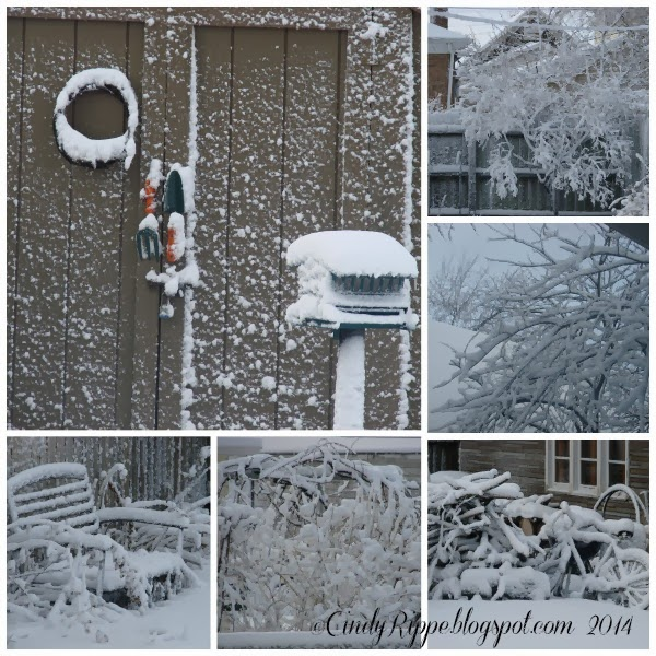 Snow in the Garden, Chicago Area Snowstorm, CindyRippe.blogspot.com,
