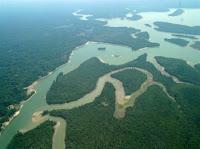 Amazônia está emitindo cada vez mais gás-estufa