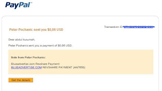 blueadvertise ss payment 5 - Magnify Script