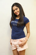 Adah Sharma photos at Peta event-thumbnail-16
