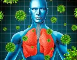 pertahanan tubuh terhadap virus