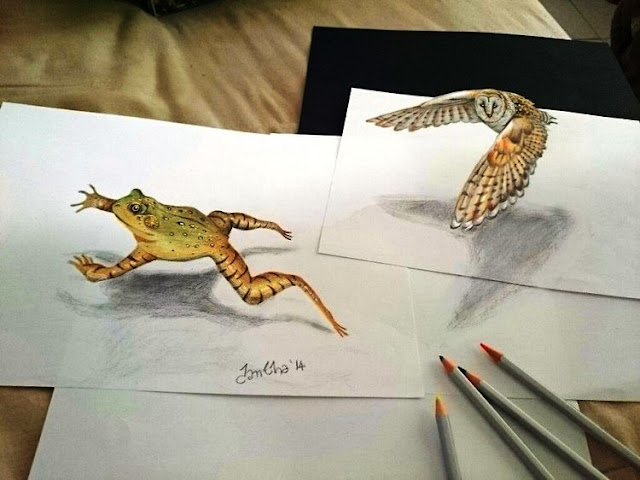 3D Animal drawing between the lines