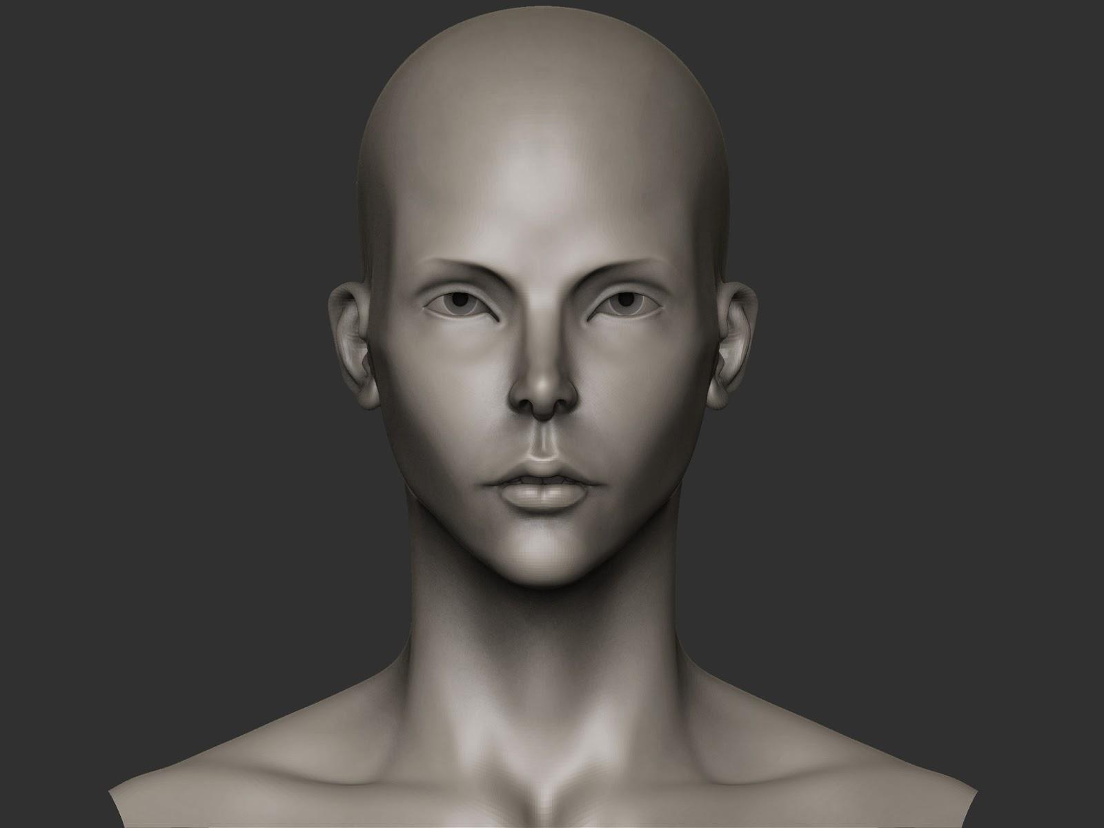 female+bust+3-21-13_redux.jpg