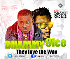 They Love The Way by Dhammy Ft 9ice