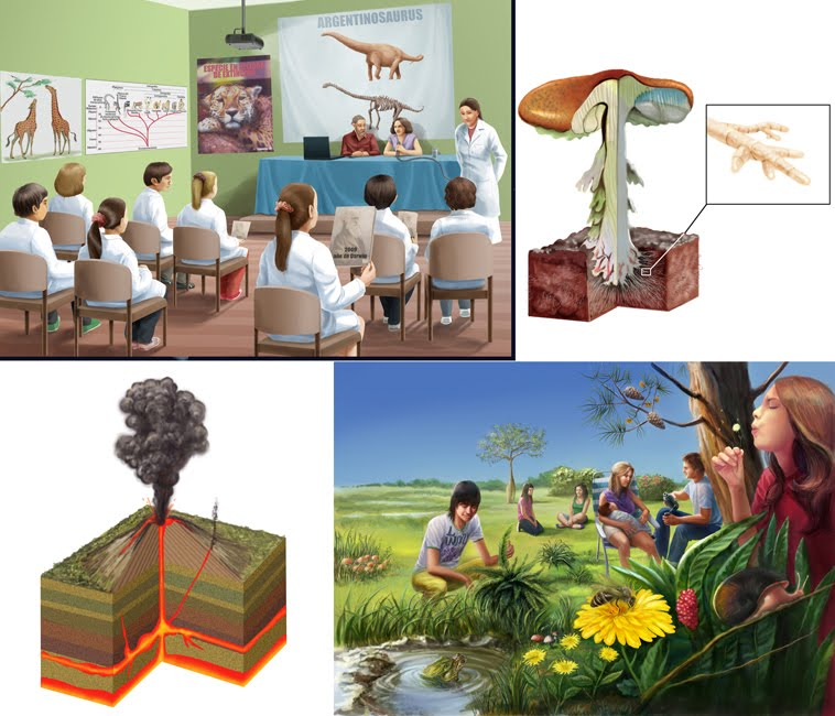 Ilustraciones para manual de naturales
