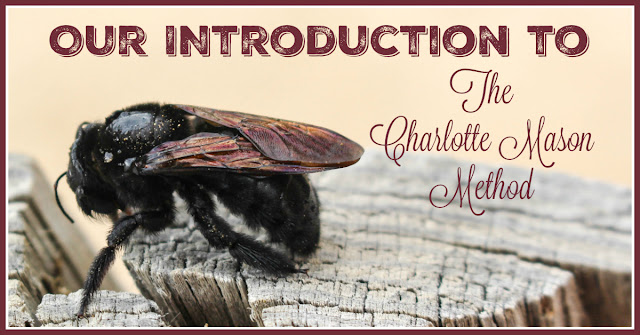 Charlotte Mason, Homeschooling, Nature Study, Classical Education