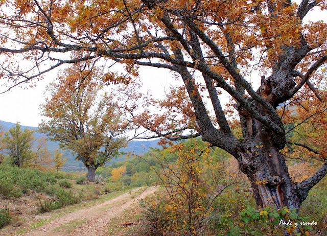 Sierra del Rincón en otoño