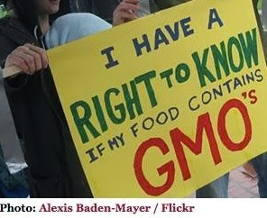 http://www.npr.org/blogs/thesalt/2013/11/06/243523116/washington-state-says-no-to-gmo-labels?ft=1&f=139941248