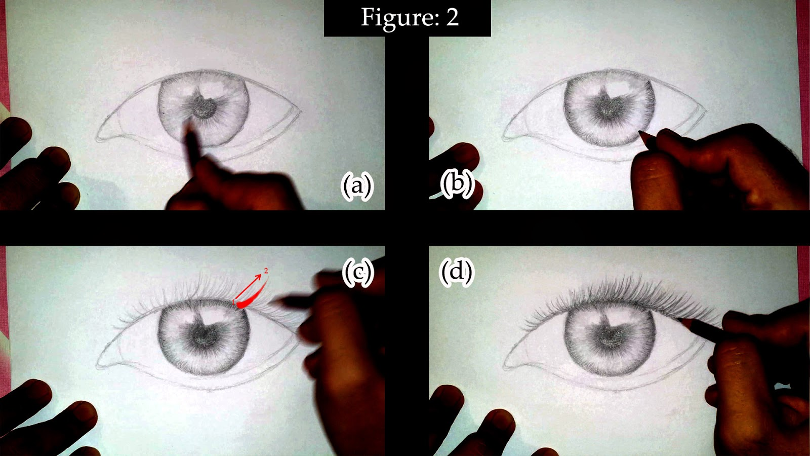 how to draw eyelashes step by step for beginners