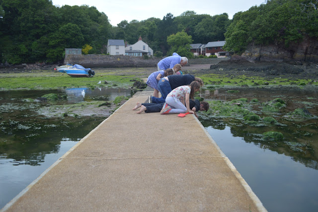 Crabbing Sandy Haven Pembrokeshire Travel UK Family Fun