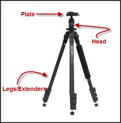 Video Ball Head Tripod