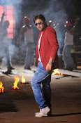 Hero Tarun Stylish Photos from Yuddham Movie-thumbnail-16