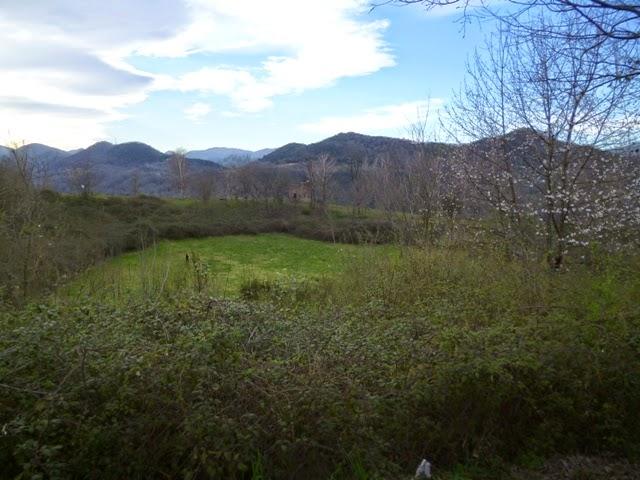 Cráter del Volcán Montsacopa. Olot