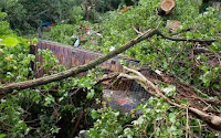 http://sciencythoughts.blogspot.co.uk/2014/06/at-least-six-dead-as-storms-batter.html