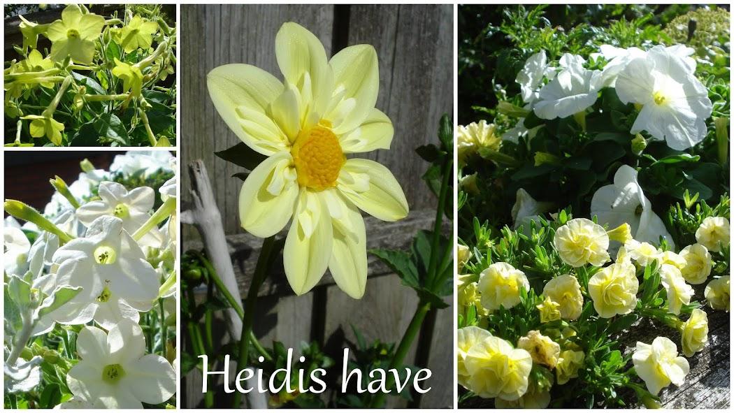 Heidis Have