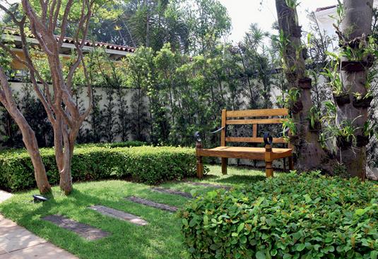 jardim quintal grande:Neste quintal, a jabuticabeira carregada de frutos, à direita, foi o