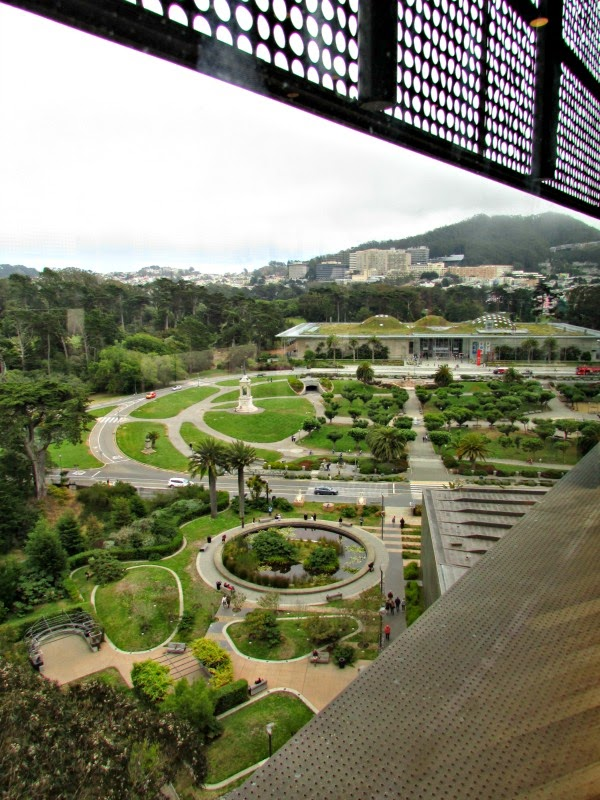 View of Academy of Sciences from Hamon Observatory Tower at de Young Museum
