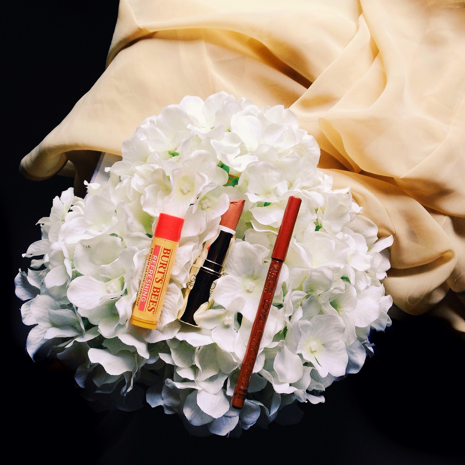 This image shows lip products.