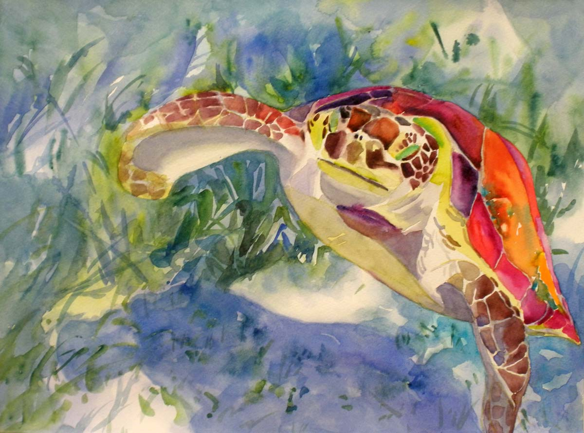KaySmithBrushworks: Green Turtle - a daily painting