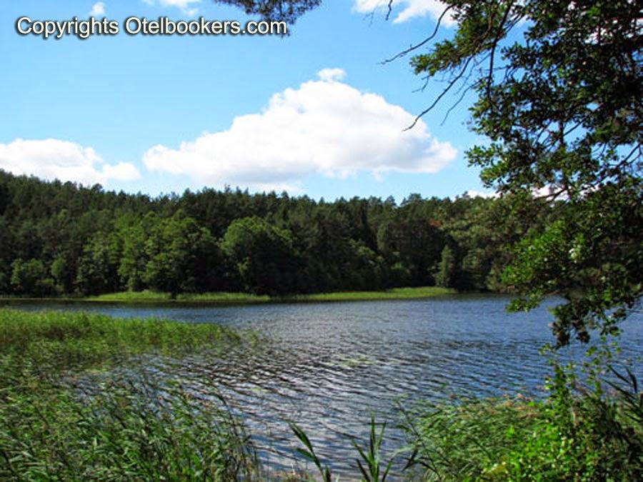 Forest Lake in Summer- Belarus