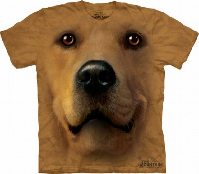 http://4.bp.blogspot.com/-NUIZS9YNAv4/Tb1FQB7YOLI/AAAAAAAAFFE/te6GhVJBgcE/s1600/Animals%2BFaces%2BOn%2BT.Shirts%2B%252819%2529.jpg