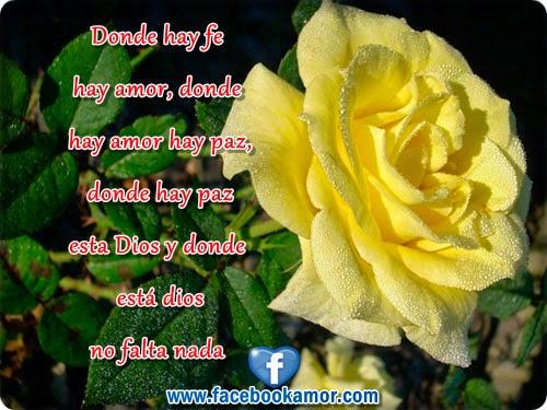 Imagenes De Rosas Y Pensamientos - Imágenes flores de rosas bonitas con frases para compartir