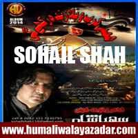 http://ishqehaider.blogspot.com/2013/11/sohail-shah-nohay-2014.html