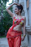 Sonia, agarwal, latest, hot, navel, pics