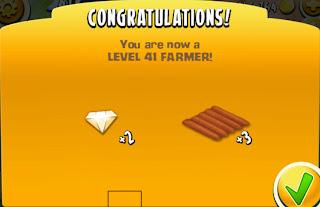 level 41