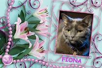 ❤️ Fiona Forever ❤️