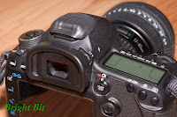 Canon EOS 5D mark III DSLR with Nikon BS-2 hot-shoe protection cap, side view