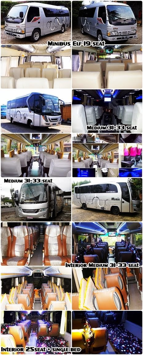 New !!! Bus Pariwisata Muria Minibus ELF : 15, 19 Seat -- Bus : 25seat + Bed Set, 29, 31, 33 Seat