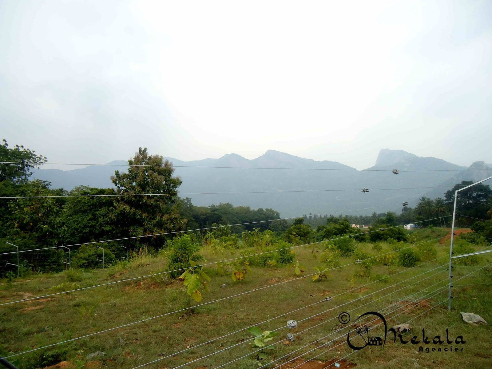 2 Acres Water Falls Farm Land For Sale At Walayar