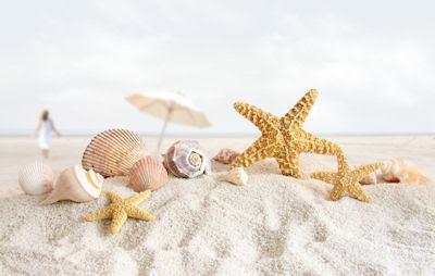 Recuerdos de mis vacaciones por las playas de arenas blancas, caracoles y estrellas de mar.