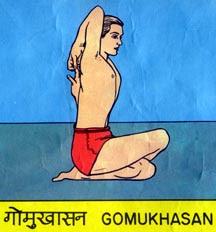 GOMUKH ASANA