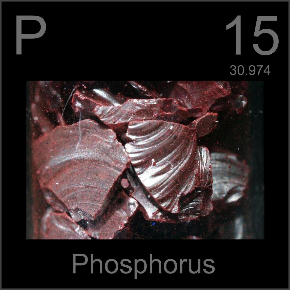 El blog de brbara elemento 15 fsforo el fsforo es un no metal perteneciente al grupo del nitrgeno que se encuentra en la naturaleza combinado en fosfatos inorgnicos y en organismos vivos urtaz Choice Image