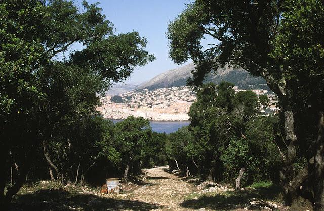 dubrovnik lokrum island