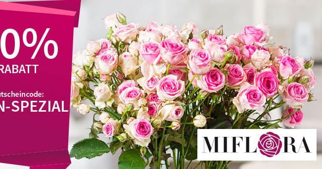 50 rabatt auf mini eden rosen in rosa bei miflora sparfuchs 39 schn ppchen blog. Black Bedroom Furniture Sets. Home Design Ideas