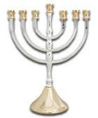 amyisrael.net