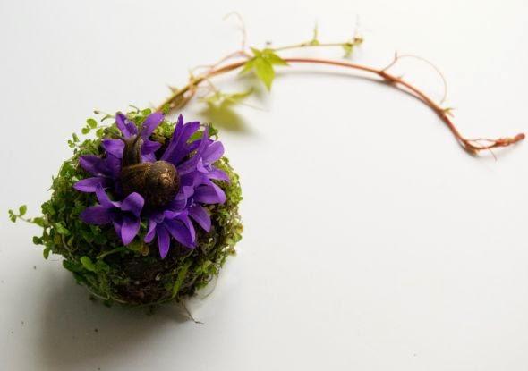 Camila Sitarama Carlow arranjos plantas flores órgãos humanos Olho