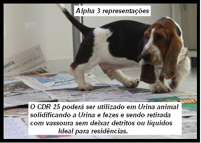 CDR 25