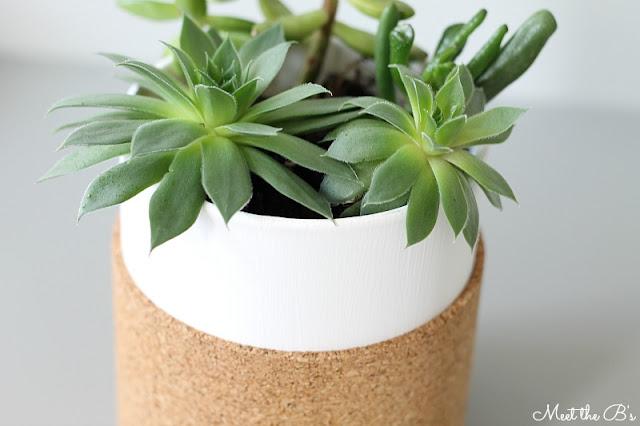 Simple DIY cork wrapped succulent planter