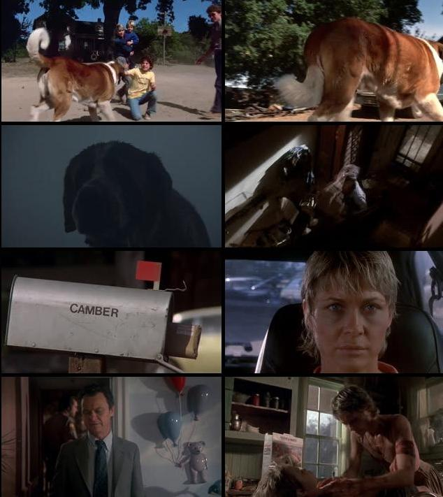 Cujo 1983 Dual Audio Hindi 480p BluRay